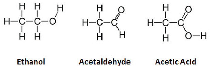 alcohol and acetaldehyde Ethanol is oxidized by adh into acetaldehyde and nadh is formed the highly   if ethanol could not be converted to acetaldehyde, any alcohol that is ingested.